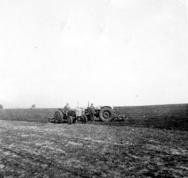 003f - Getreide einfahren auf der Farm von Claus - Societé Maire, Tunis