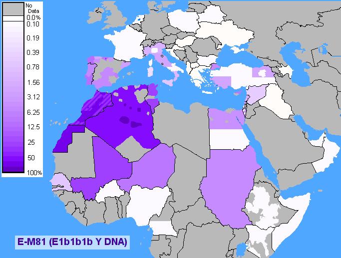 Verbreitung Berber-DNA E1B1B1B