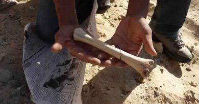 Britische Forscher finden Hinweise auf 72.000 Jahre alten menschlichen Korridor durch Tunesien
