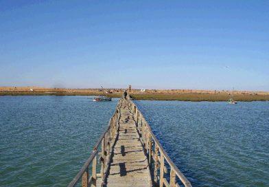 Inseln Tunesiens: Kneiss Inseln im Golf von Gabes