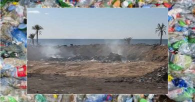 Müll Symbolfoto
