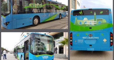 Elektrobus China