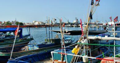 Fischerboote im Hafen von Sousse