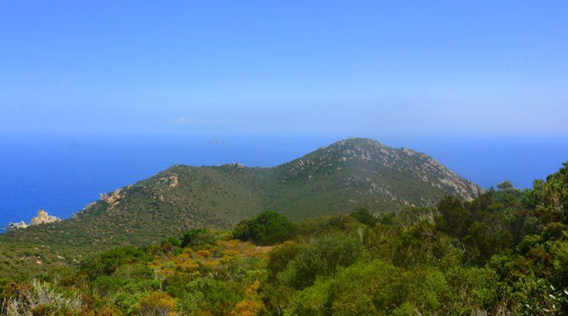 Meeresschutzgebieten Insel Zembra