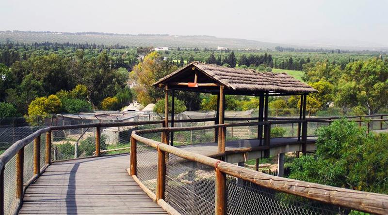 Blick über das weitläufige Gelände des Friguia Parks - Foto Friguia Park