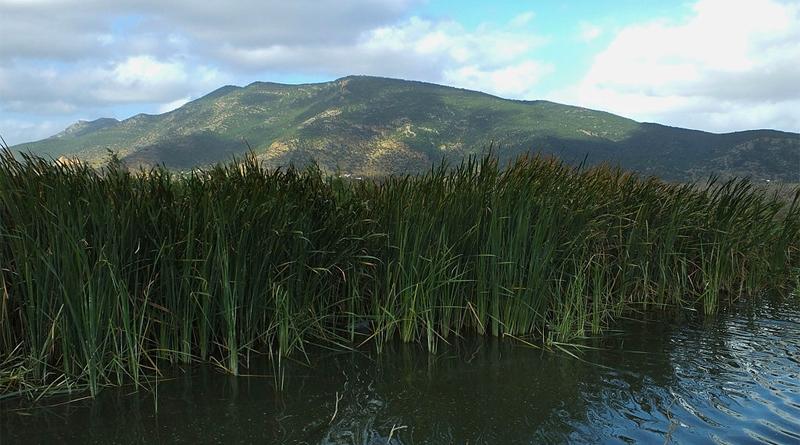 Jebel Ichkeul vom See aus gesehen - Bild: Von Elgollimoh - Eigenes Werk, CC BY-SA 3.0, https://commons.wikimedia.org/w/index.php?curid=40184727
