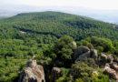 Feija Nationalpark bei Ghardimaoui - Bild: Von Mokdad.nysrine - Eigenes Werk, CC BY-SA 3.0, https://commons.wikimedia.org/w/index.php?curid=39980866