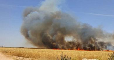 96 Prozent der Brände wurden durch menschliche Faktoren verursacht