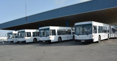Gelenk-Linienbusse der STS