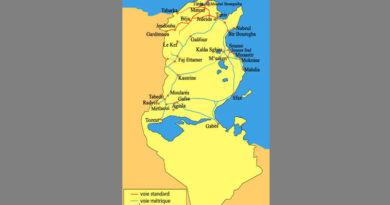 SNCFT: Vor der Sanierung der Eisenbahnlinie 6 von Tunis über Kalaat Khasba nach Kasserine?