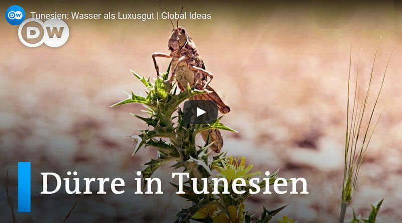Dürre - Wasser ist in Tunesien eine knappe Ressource