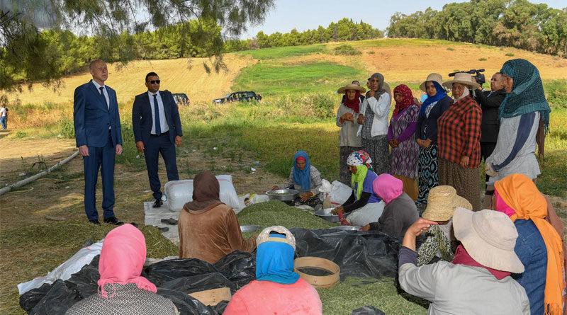 Nationaler Tag der Frau: Präsident besucht Landarbeiterinnen