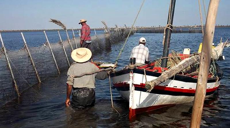 UNESCO: Couscous und das Charfiya-Fischen immaterielles Kulturerbe